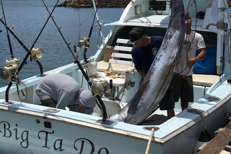 Marlin caught on Big Ta Do